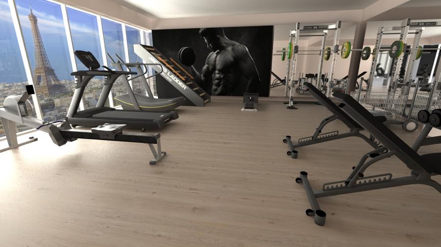 Hotel Complete Gym Design