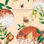 Stationary & Wallpaper Catalogue